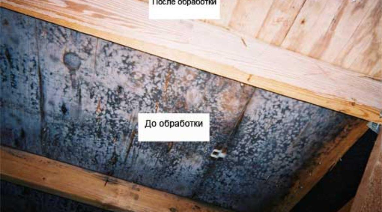 Защита стен и потолка бани от влаги